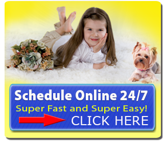 KleenDry Carpet Cleaning - Schedule Online