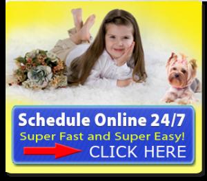 KleenDry Carpet Cleaning - Schedule Online